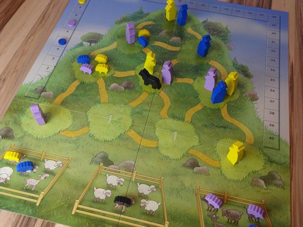 Sheepdogs Spielsituation