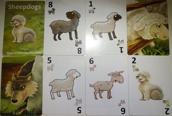 Sheepdogs Karten