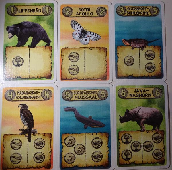 Tierisch Bedroht Tierkarten