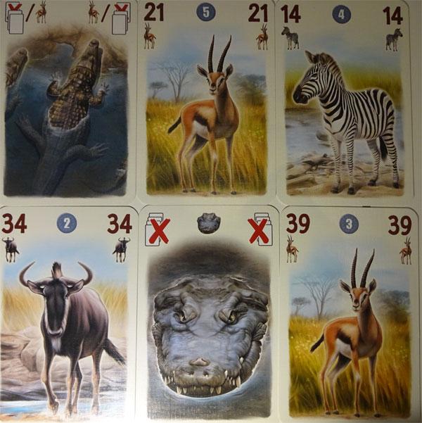 Tembo Spielkarten