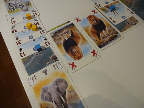 Tembo Spielsituation