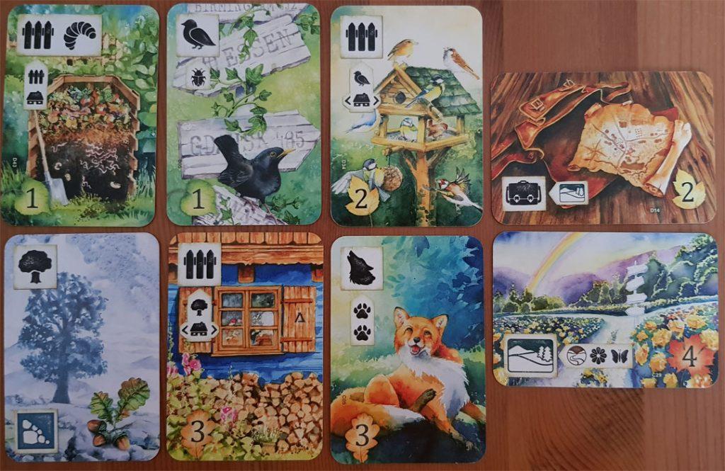 Meadow Spielkarten